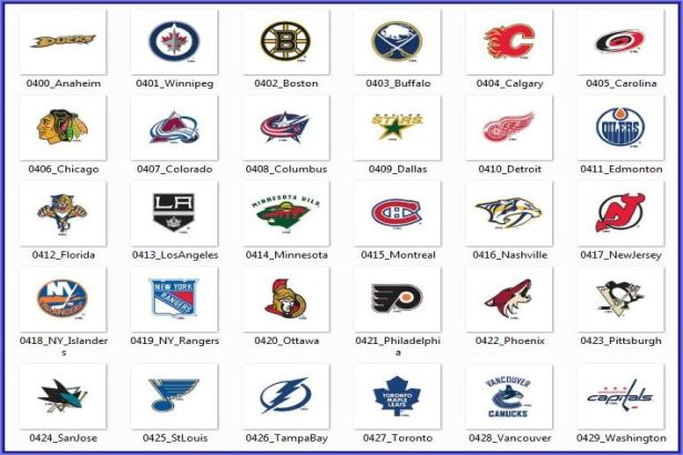 NHL Collection Roller Shades