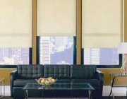 Roller Shades and Solar Shades