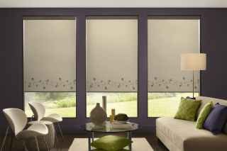 Roller Shades with border
