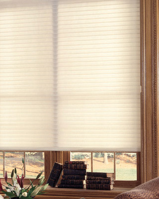 "BlindsOnTime Horizontal Basic 2"" Light Filtering Shadings"