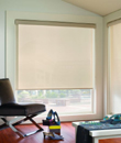 BlindsOnTime RollerShade Premium Screens