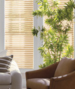 "Levolor� 2"" NuWood Composite Blinds"